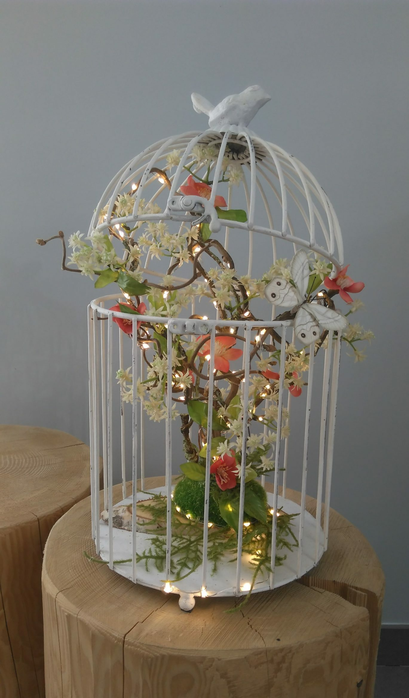 Cage lumineuse